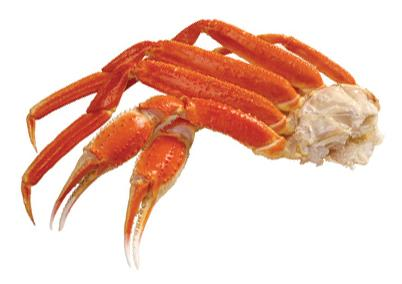 snow crab category